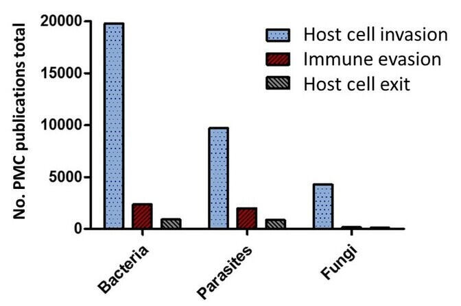 Graph: Publications about host cell exit